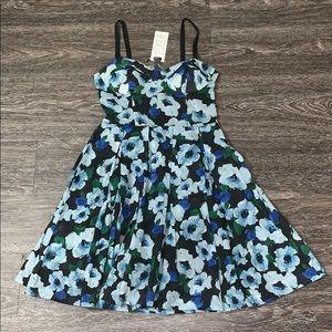 NWT BB Dakota Dress